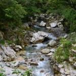 Tolmin szurdok (1)
