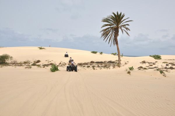 Zöld-foki Köztársaság -Viana sivatag