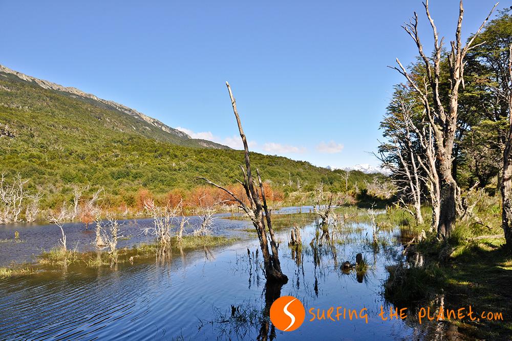 Kép 7- Tuzföld Nemzeti Park