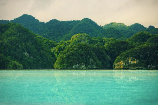 Parque Nacional Los Haïtises -Samana