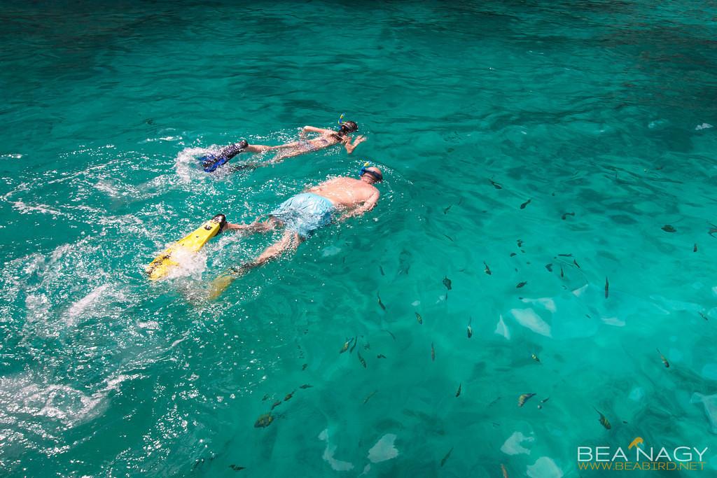 Beach.Snorkelling.Azure-6714-XL-XL