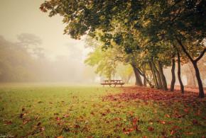 Tata őszi pompában