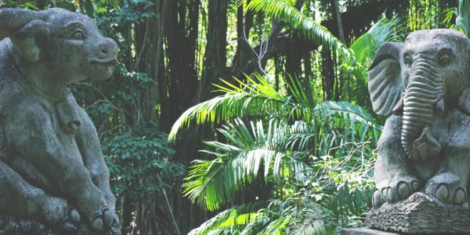 monkeyforest1_Ubud_Bali
