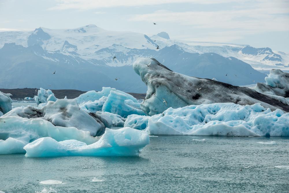 Jökulsárlón gleccser_Izland (1)