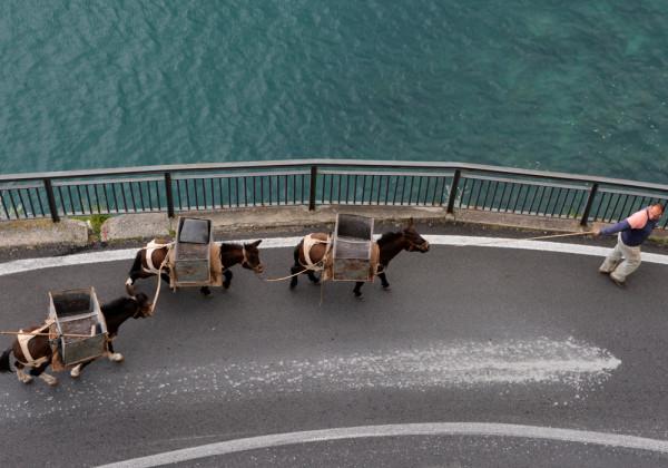 Amalfi-part_Amalfi (7)