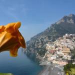 Amalfi-part_Positano (1)