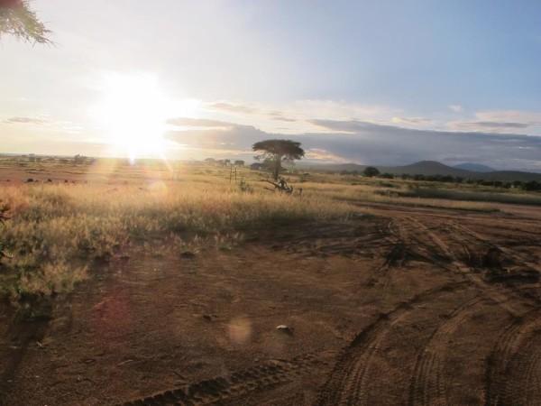 Tanzania (4)