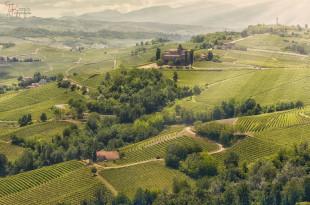 Langhe_Piemonte_09