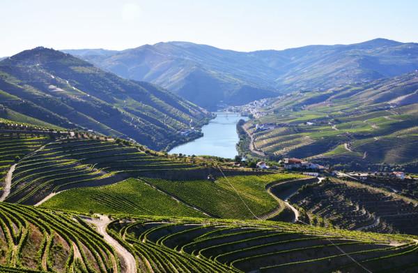 Douro_volgye_Portugalia_14