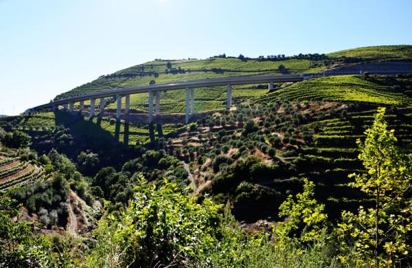 Douro_volgye_Portugalia_16