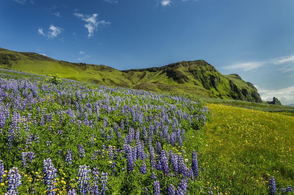 Izland_stop_sator_07