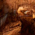 Postojna Cave_017