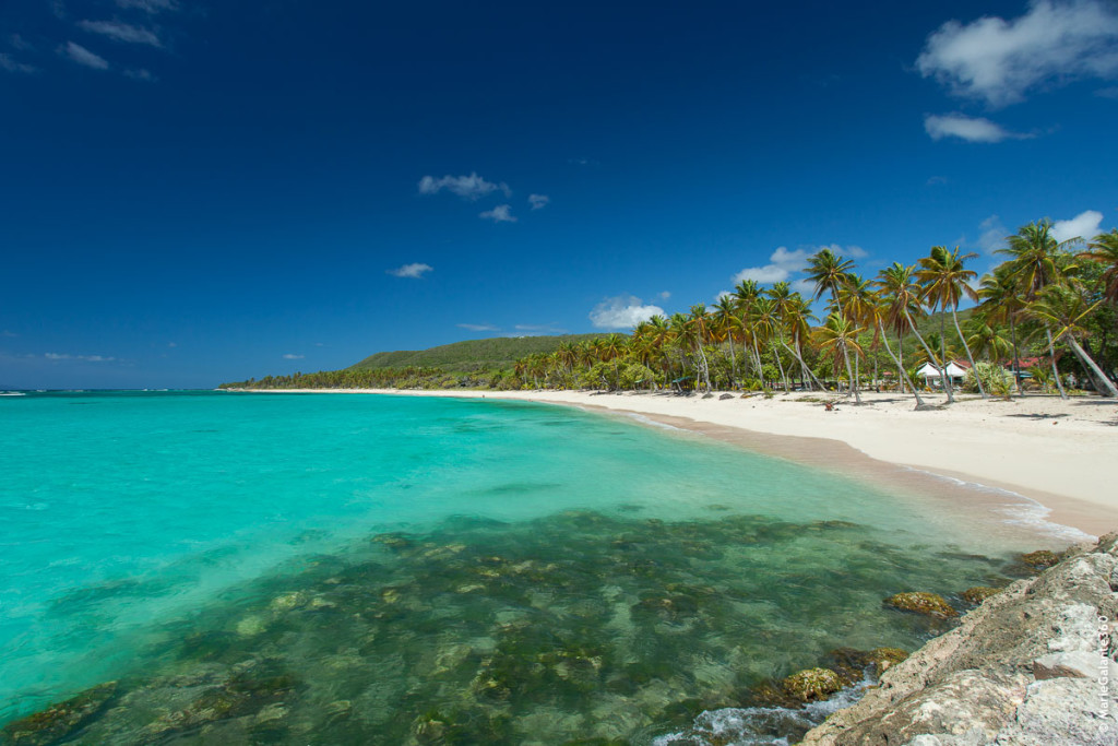 guadeloupe_mariegalante_plage_lafeuillere-3