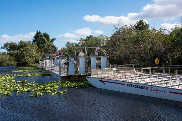Everglades_Airboat_03