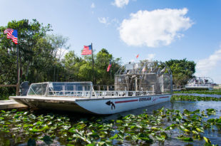 Everglades_Airboat_09