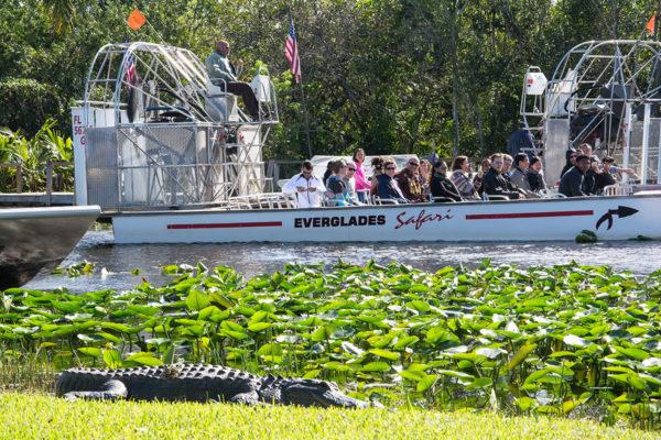 Everglades_Airboat_11