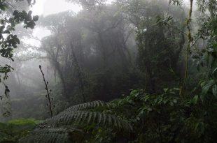 Ometep sziget_Nicaragua_01