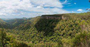 Springbrook-Canyon-Lookout-1-Panorama