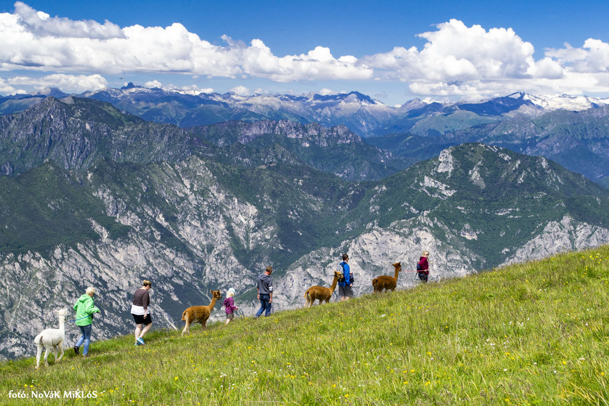 Monte Baldo_Garda to_Olaszorszag_17