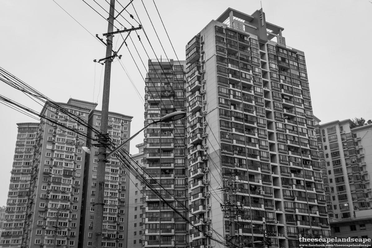 Shanghai_Kina_21