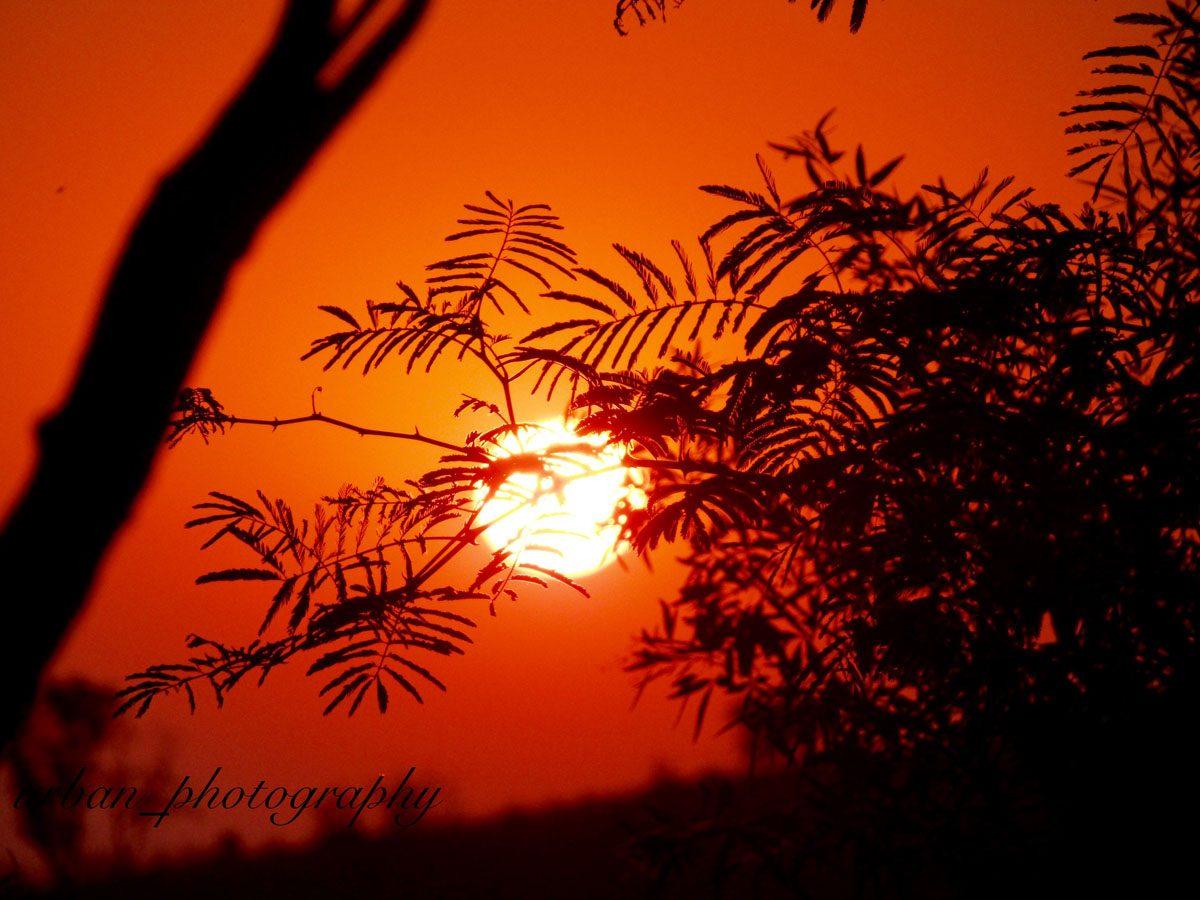 kevin richardsons wildlife sanctuary_del afrika_03