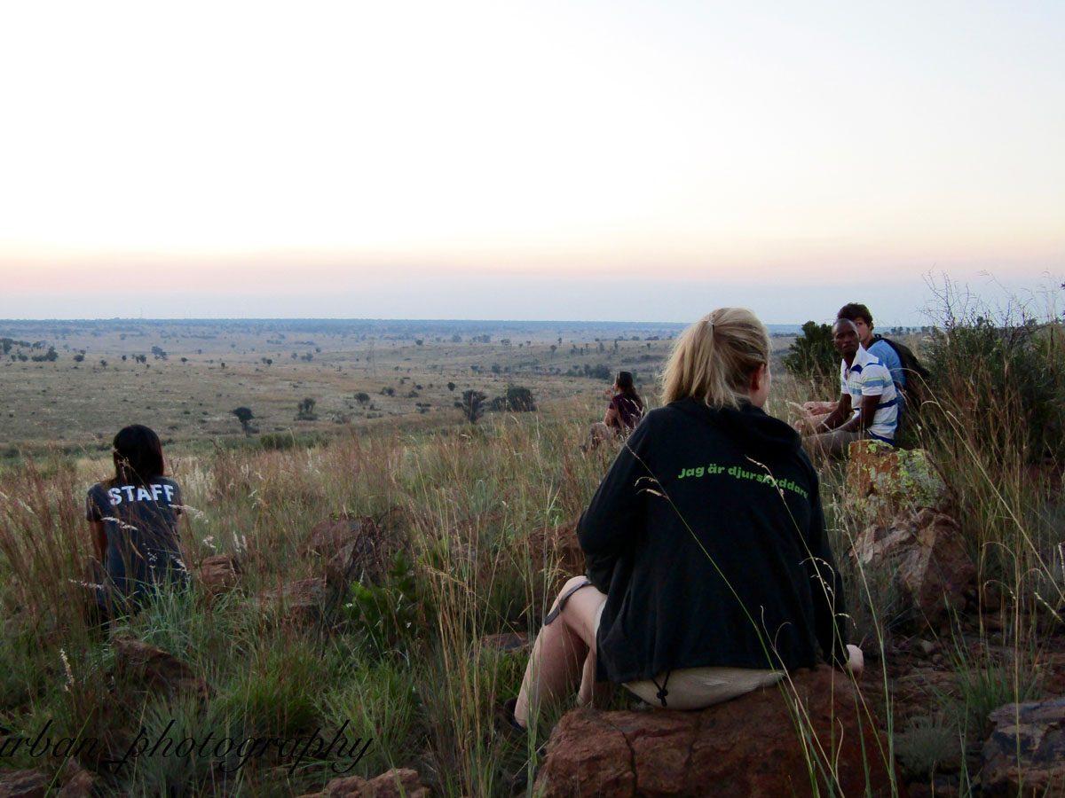 kevin richardsons wildlife sanctuary_del afrika_04