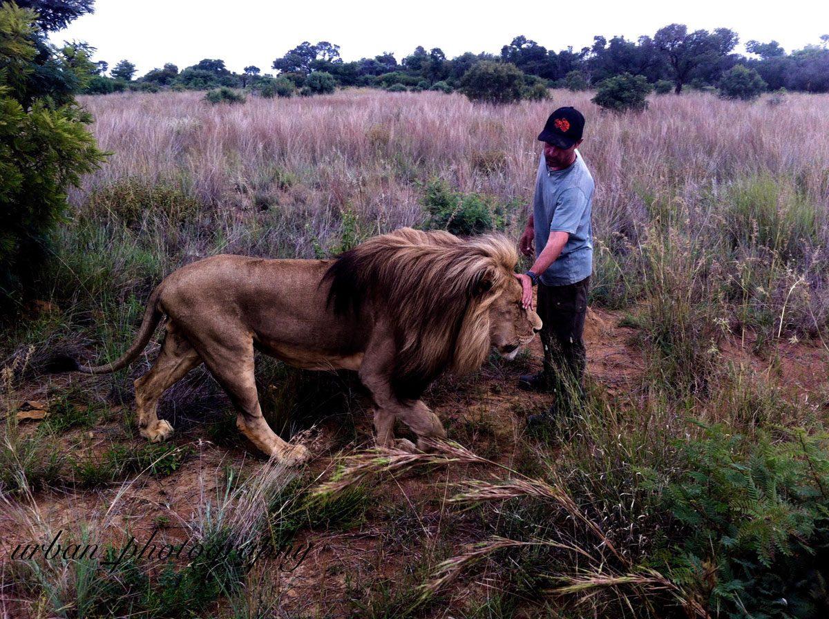 kevin richardsons wildlife sanctuary_del afrika_09