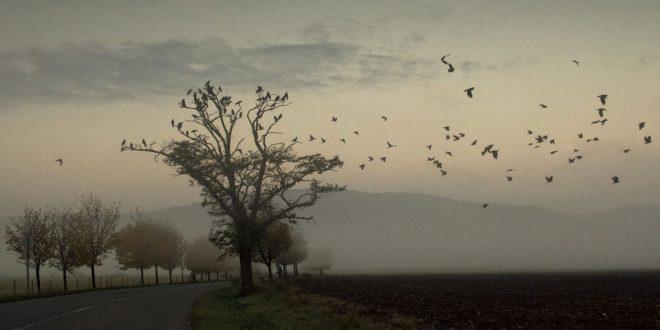 Lehet KÉK a Balaton-felvidéki ősz (és tavasz)