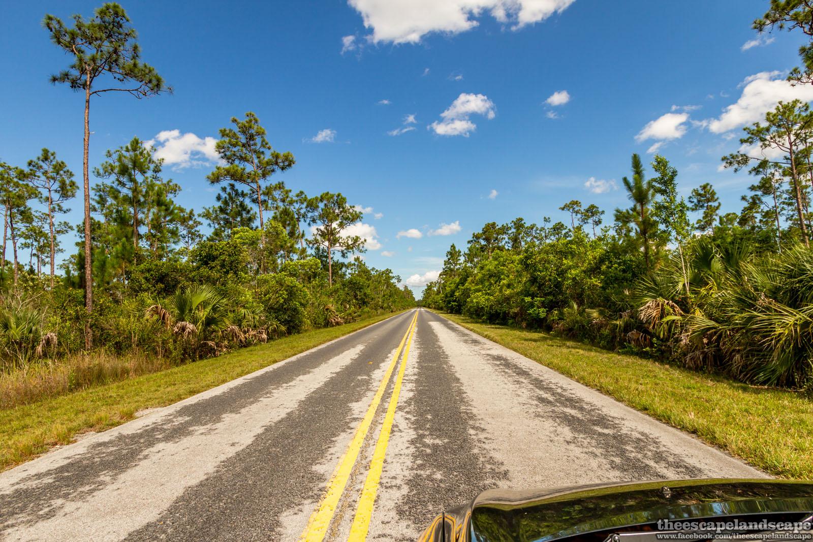 everglades_nemzeti_park_florida_07