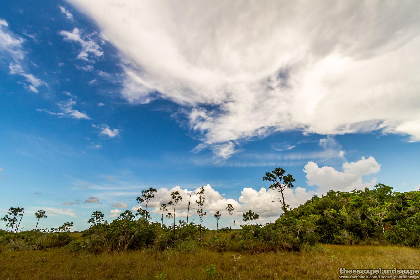 everglades_nemzeti_park_florida_08