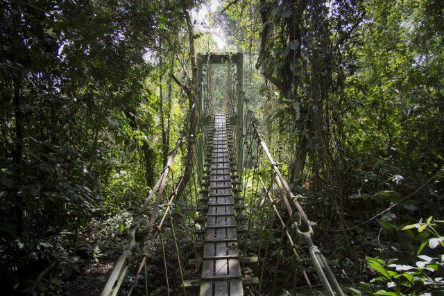 gunung_mulu_nemzeti_park_borneo_malajzia