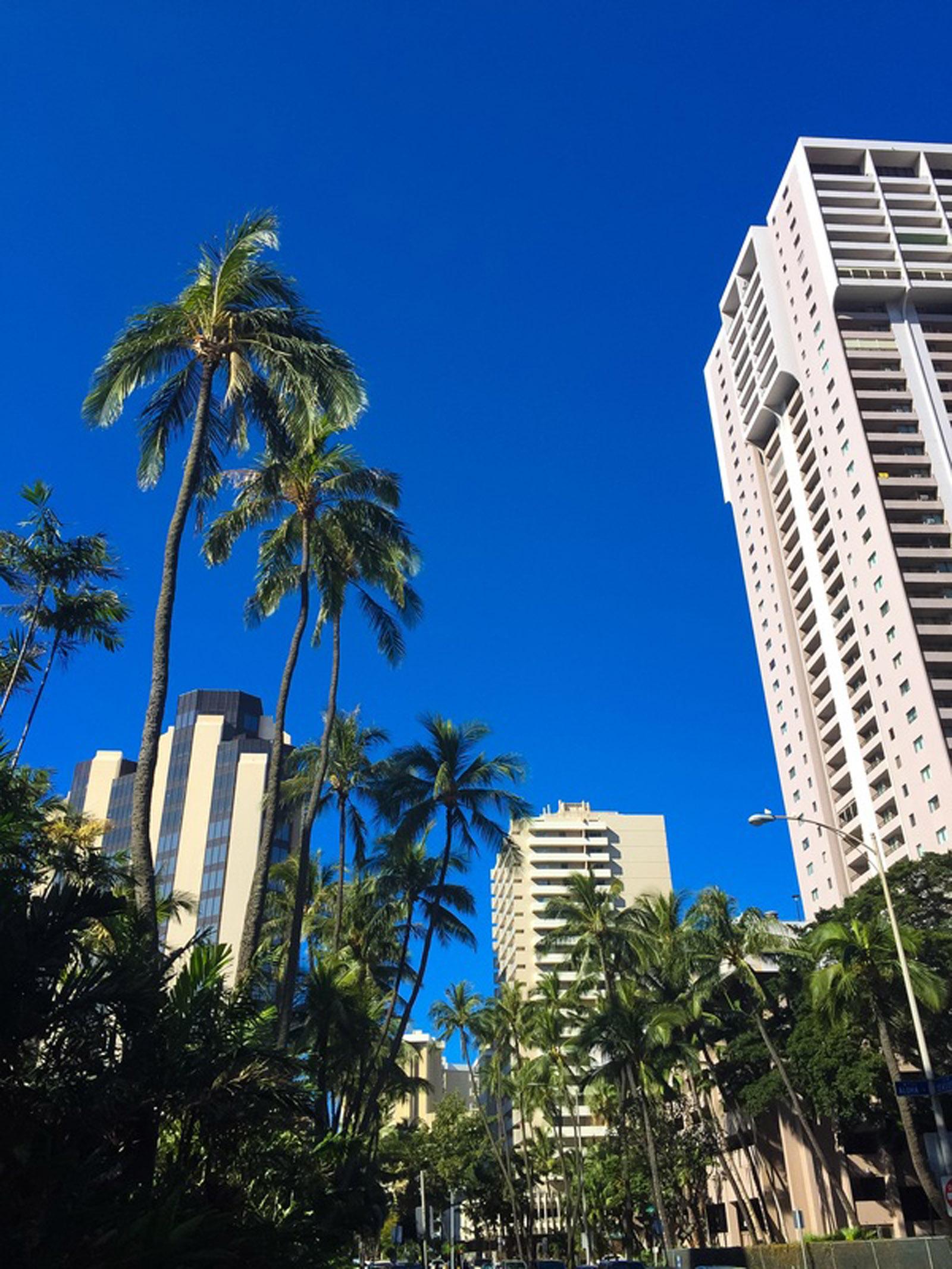 oahu_hawaii_04