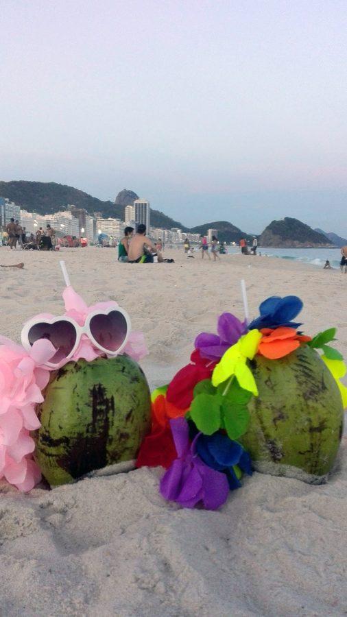 rio-de-janeiro_brazilia_12