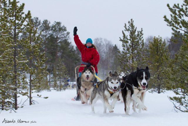pasvik-nemzeti-park_norvegia_07