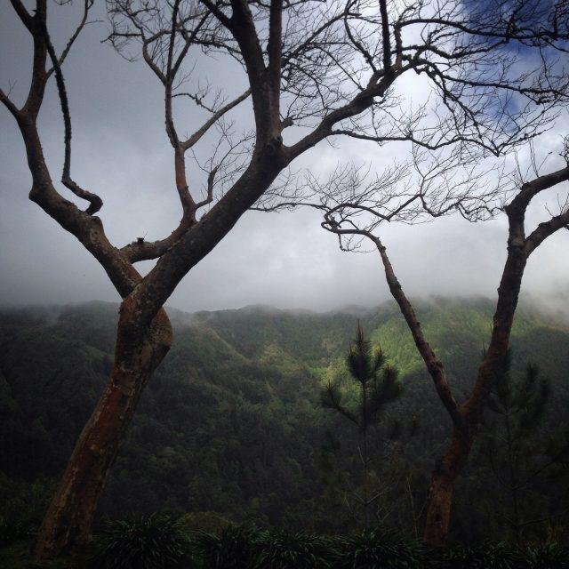 sao-miguel_azori-szigetek_03