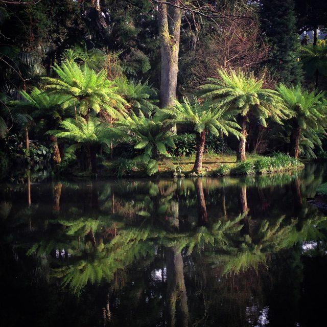 sao-miguel_azori-szigetek_25