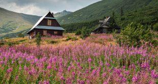 Tátrai túrák Zakopane környékén
