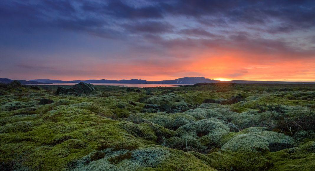 Egy váci Izlandon: a nők szabad világa, ahol egy kedves hölgy a miniszterelnök