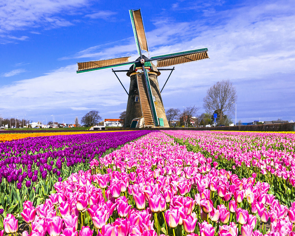 7 unmissable sights at Amsterdam's surroundings